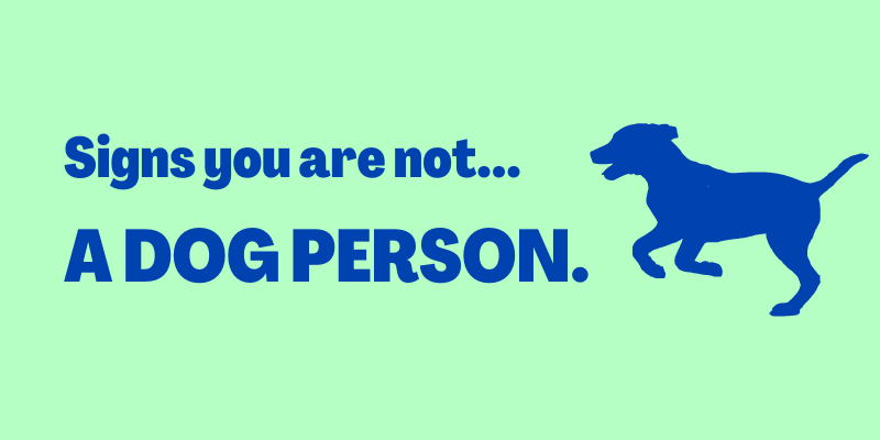 Signs You Are Not A Dog Person, Why you shouldn't get a dog